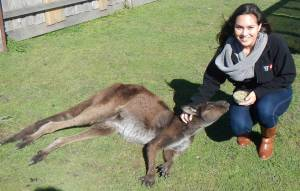 Alex and Kangaroo